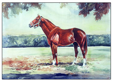 Secretariat on Claiborne Farms, Paris, Ky