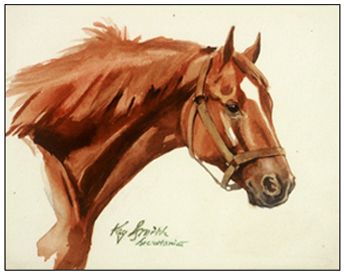 Triple Crown Winner in 1973 Head Study of Secretariat